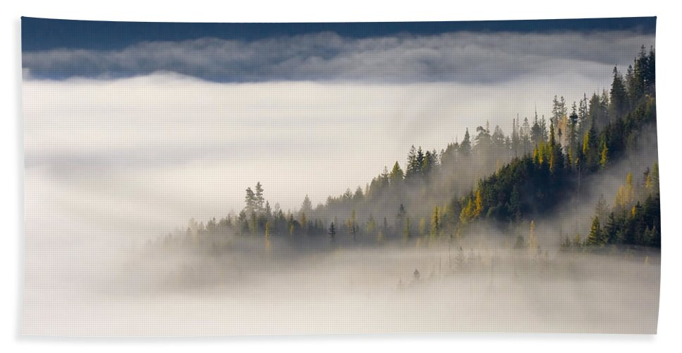 Fog Beach Towel featuring the photograph Autumn Morn by Mike Dawson