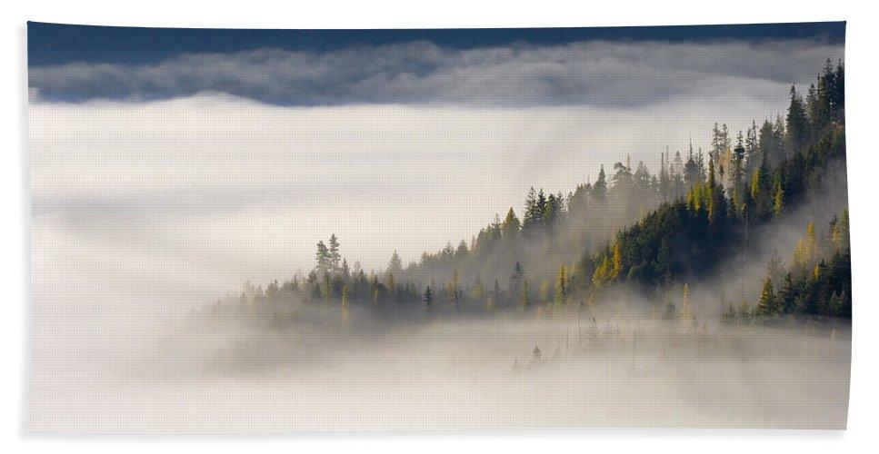 Fog Beach Sheet featuring the photograph Autumn Morn by Mike Dawson