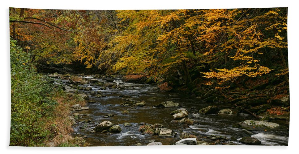 Water Beach Towel featuring the photograph Autumn Mountain Stream by Shari Jardina