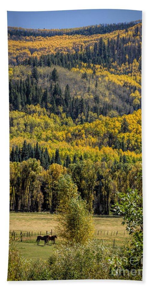 Autumn Beach Towel featuring the photograph Autumn On A Colorado Range by Janice Pariza