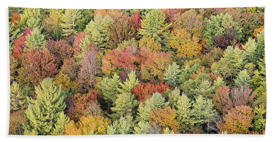 Vermont Beach Towel featuring the photograph Autumn Palette by Bruce Neumann
