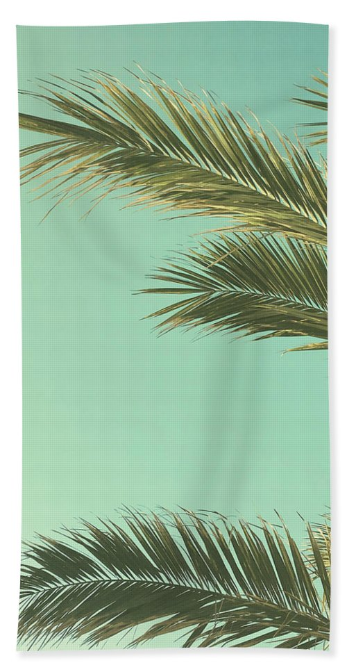 Palm Trees Beach Towel featuring the photograph Autumn Palms II by Cassia Beck