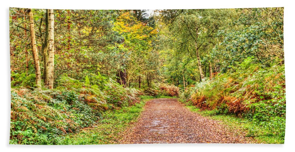 Autumn Beach Towel featuring the photograph Autumn Path by Chris Day