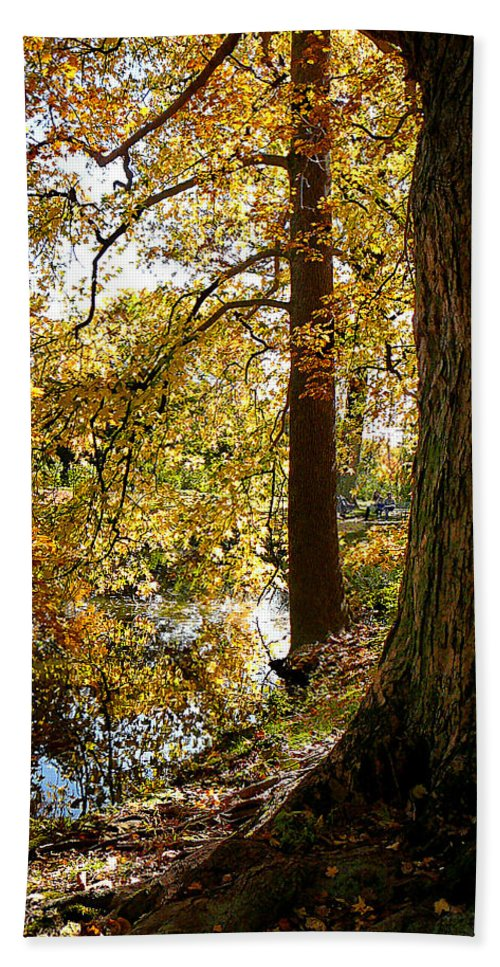 Autumn Beach Towel featuring the photograph Autumn Perspective by Susan Savad