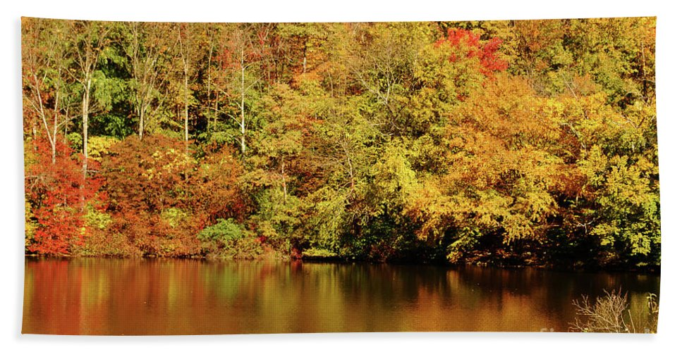 Landscape Beach Towel featuring the photograph Autumn Reflection by Lori Tambakis