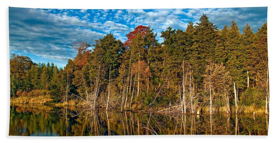 Reflection Beach Towel featuring the photograph Autumn Reflection by Steve Harrington