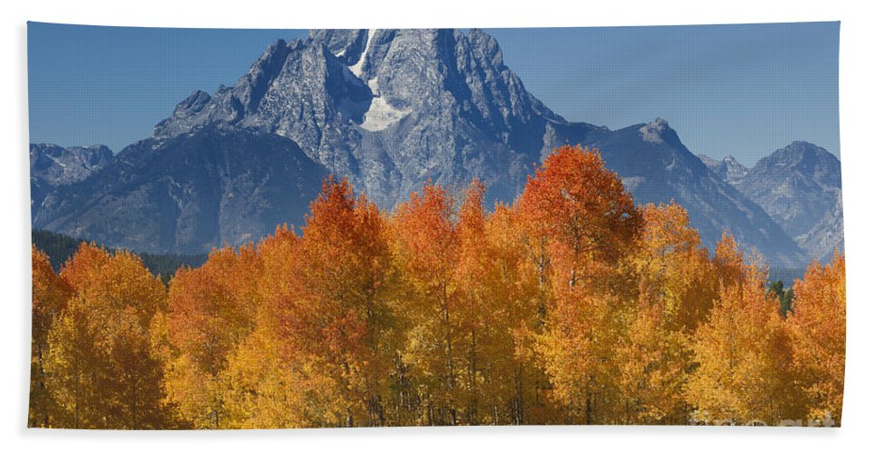 Grand Teton Beach Towel featuring the photograph Autumn Splendor In Grand Teton by Sandra Bronstein