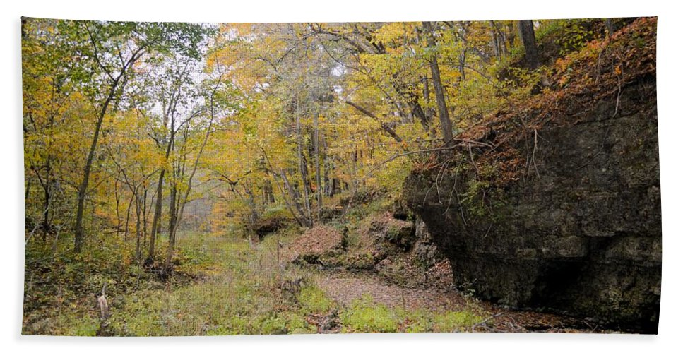 Forest Beach Towel featuring the photograph Autumn Stream by Bonfire Photography