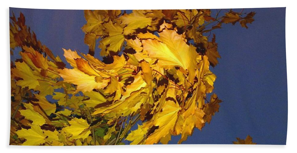 Maple Leaves Beach Towel featuring the photograph Autumn Winds by Will Borden
