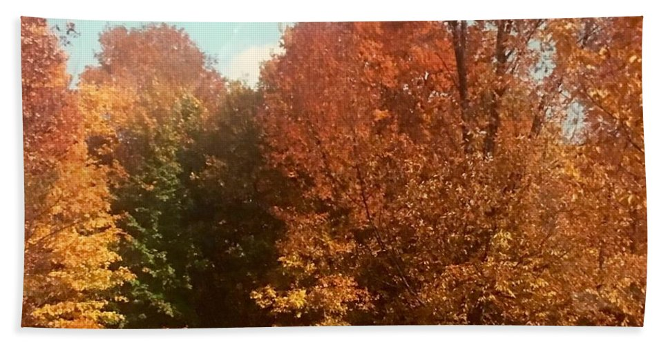 Beach Towel featuring the photograph Autumn Woods by Jo Ann Farabee