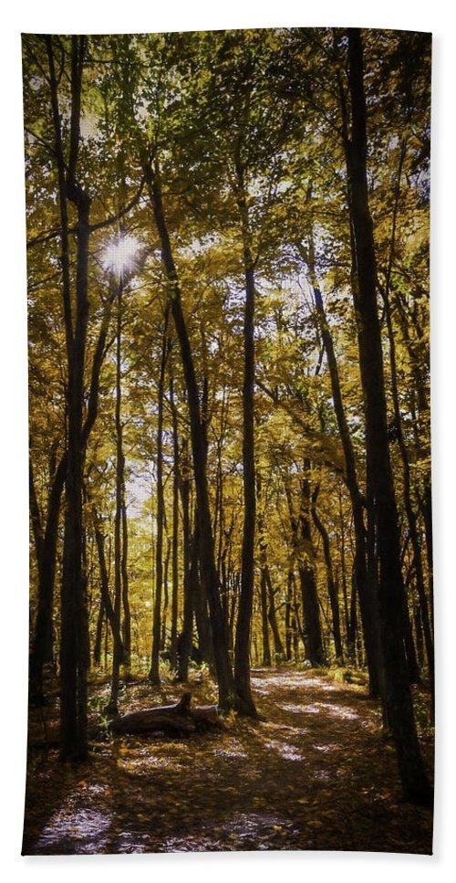Autumn Beach Towel featuring the photograph Autumns Fire by Scott Norris