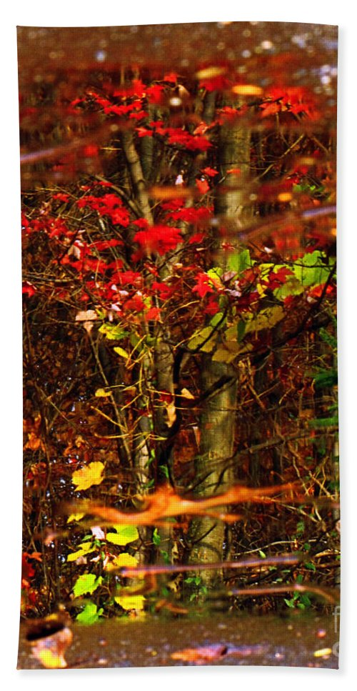 Tree Beach Towel featuring the photograph Autumns Looking Glass 2 by September Stone