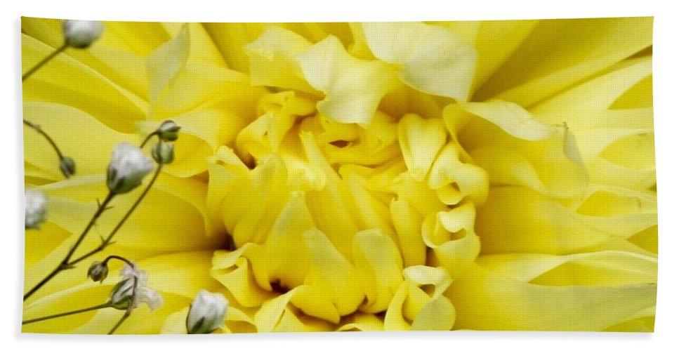Yellow Beach Towel featuring the photograph Awaken by Matthew Wilson
