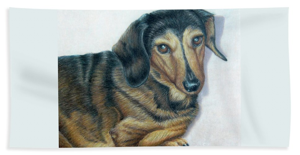 Fuqua - Artwork Beach Towel featuring the drawing Babe by Beverly Fuqua