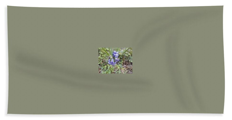 Blue Flowers Beach Towel featuring the photograph Baby Blues by R Chambers