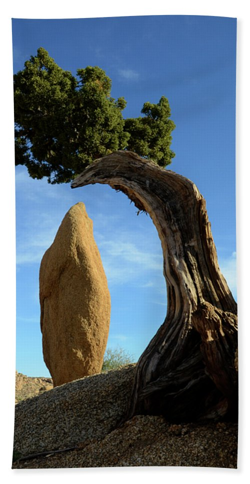 Joshua Tree National Park Beach Towel featuring the photograph Balancing Act by Bob Christopher