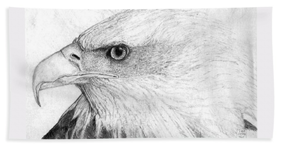 Pencil Drawing Beach Towel featuring the drawing Bald Eagle Profile by Lucien Van Oosten