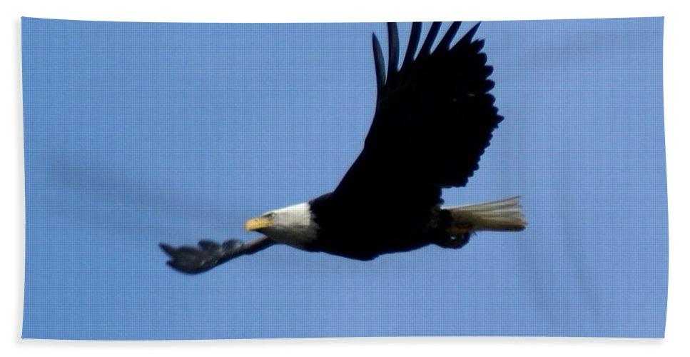 Spokane Beach Towel featuring the photograph Bald Eagle Soaring High by Ben Upham III