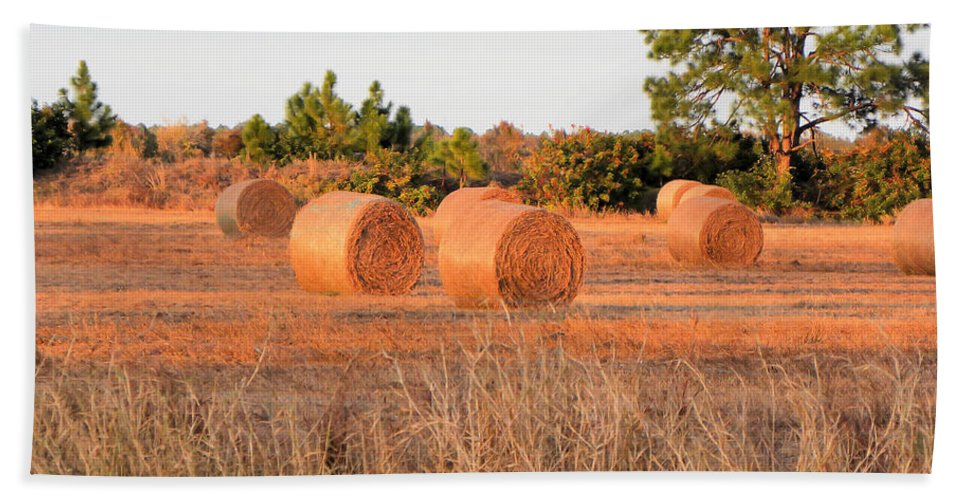 Bales Beach Towel featuring the photograph Bales by Rosalie Scanlon