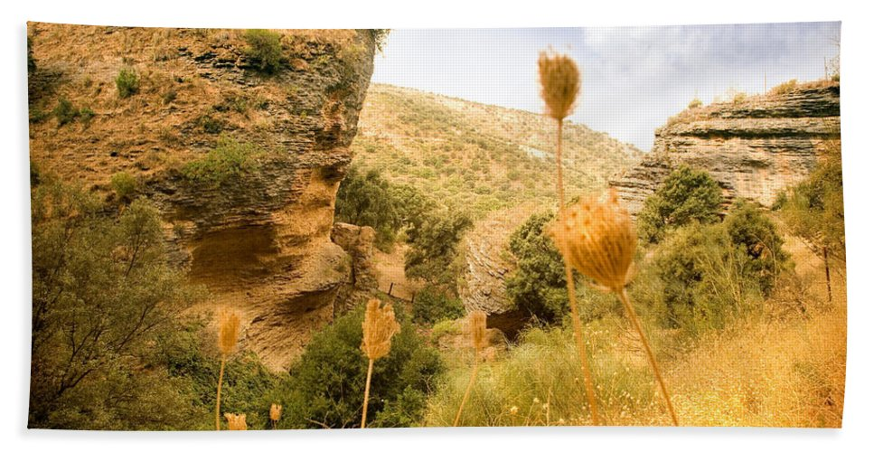 Spain Beach Towel featuring the photograph Bandit Country Near The Edge Of The Fan In Ronda Area Andalucia Spain by Mal Bray