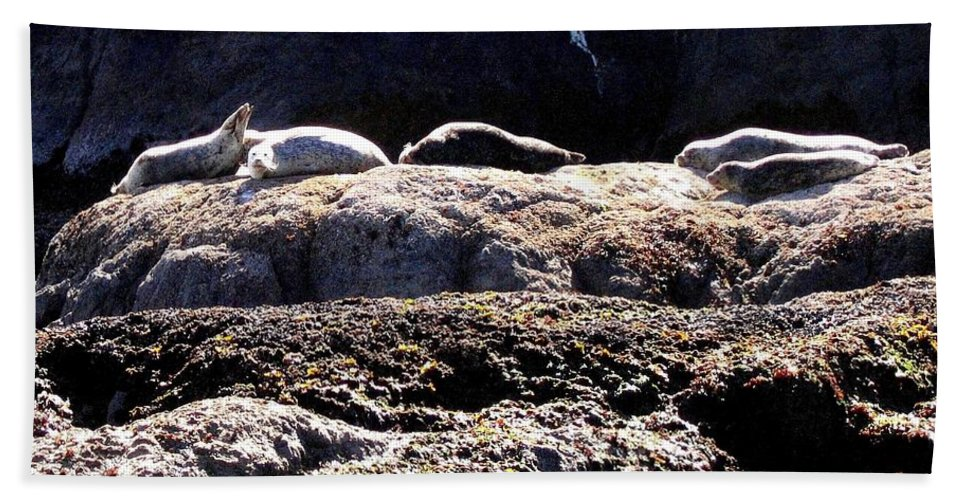 Bandon Beach Towel featuring the photograph Bandon 11 by Will Borden
