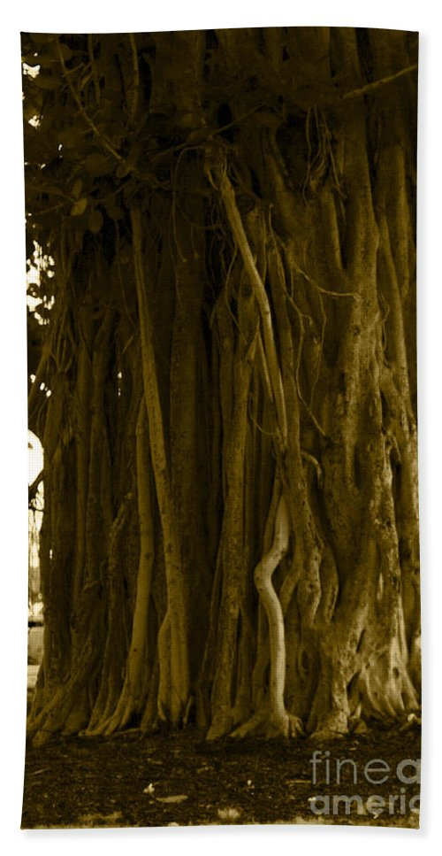 Sepia Beach Towel featuring the photograph Banyan Surfer - Triptych Part 1 Of 3 by Sean Davey
