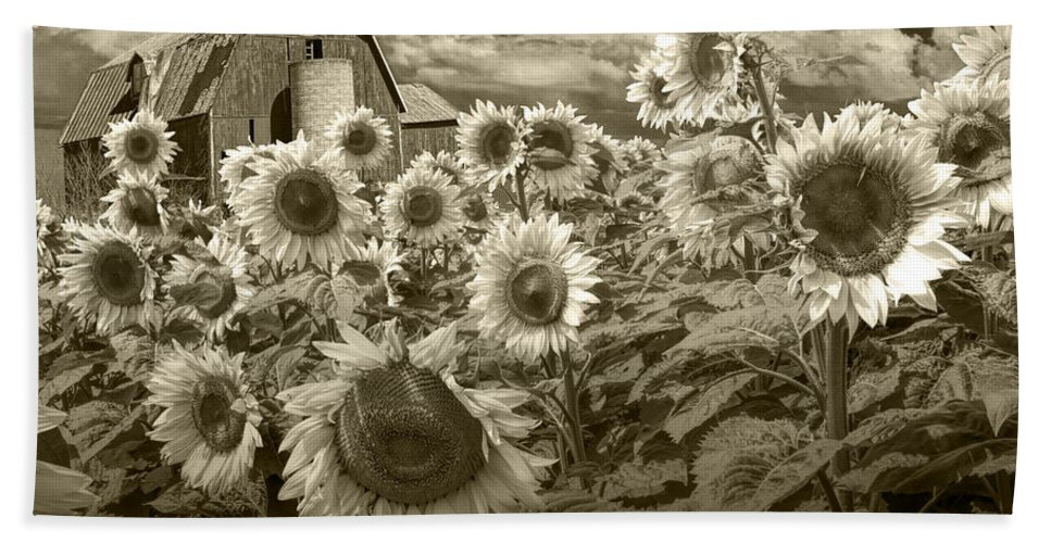 Sunflower Beach Towel featuring the photograph Barn And Sunflowers In Sepia Tone by Randall Nyhof