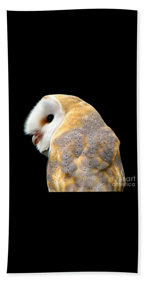Birds Beach Towel featuring the photograph Barn Owl by Rose Santuci-Sofranko