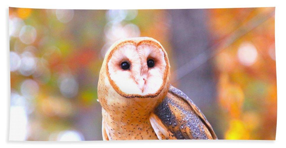Beach Sheet featuring the photograph Barn Owl by Tony Umana