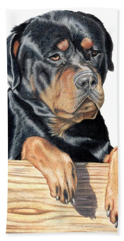 Dog Beach Towel featuring the drawing Bart by Kristen Wesch