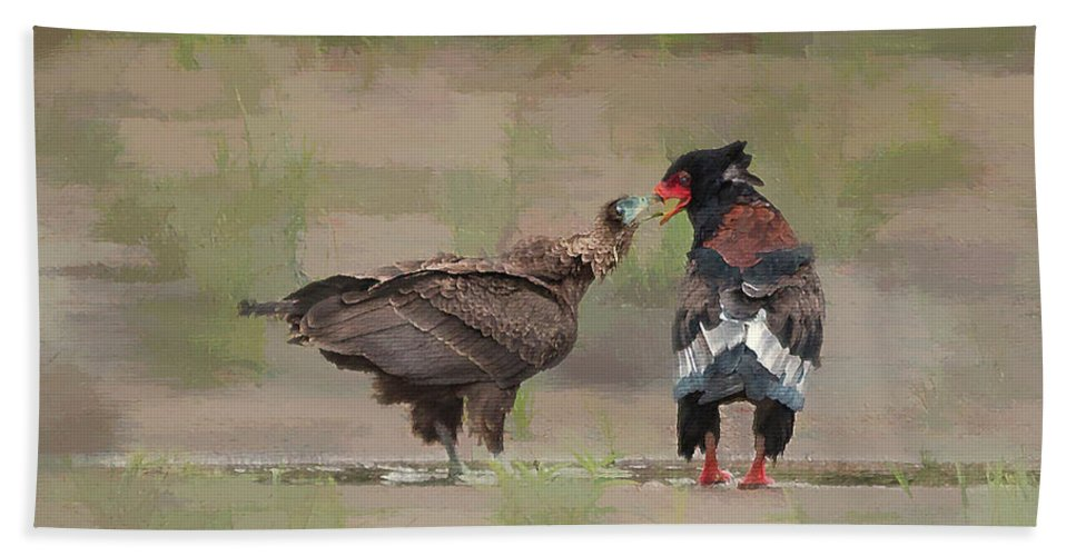 Bird Beach Towel featuring the photograph Bateleur In Kruger National Park by Ronel Broderick