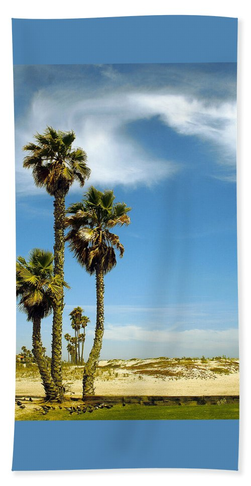 Palm Tree Beach Towel featuring the photograph Beach View With Palms And Birds by Ben and Raisa Gertsberg