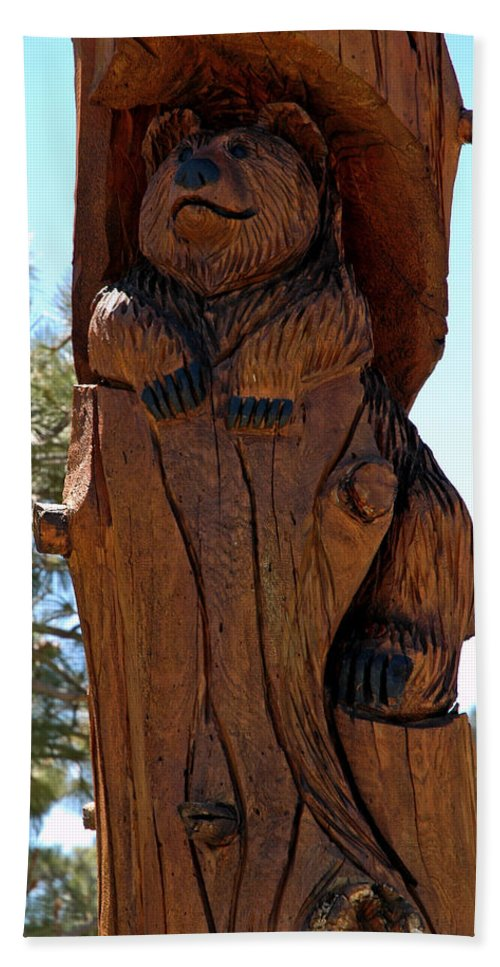 Usa Beach Towel featuring the photograph Bear In Wood by LeeAnn McLaneGoetz McLaneGoetzStudioLLCcom