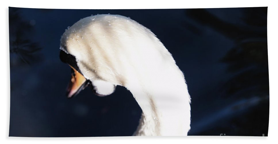 Swan Beach Towel featuring the photograph Beautiful Abstract Surreal White Swan Looking Away by Rka Koka