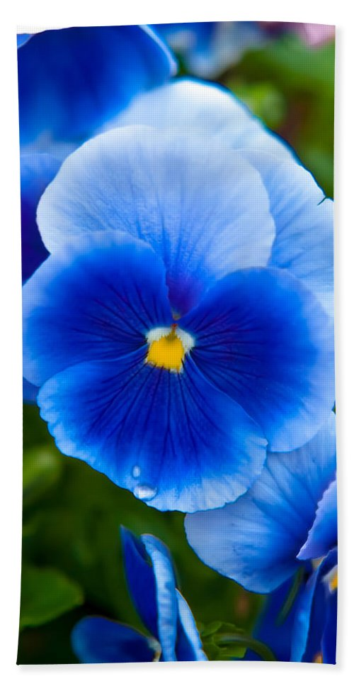 Spring Flowers Beach Towel featuring the photograph Beautiful Blues by Az Jackson