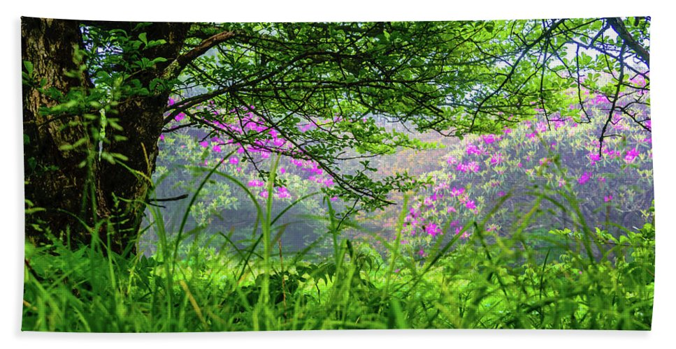 Flowers Beach Towel featuring the photograph Beauty In The Fog by Gary Bond
