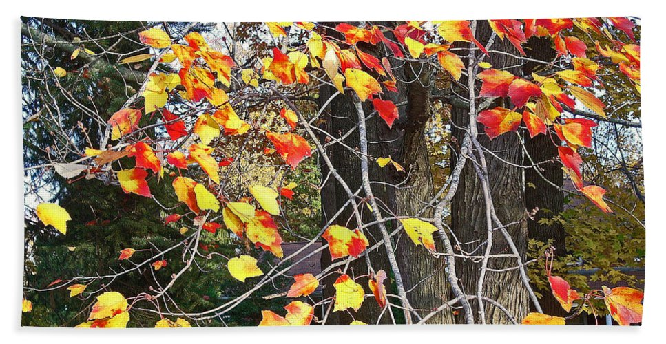Fall Leaves Painting Beach Towel featuring the photograph Beauty Of Fall by Karin Dawn Kelshall- Best