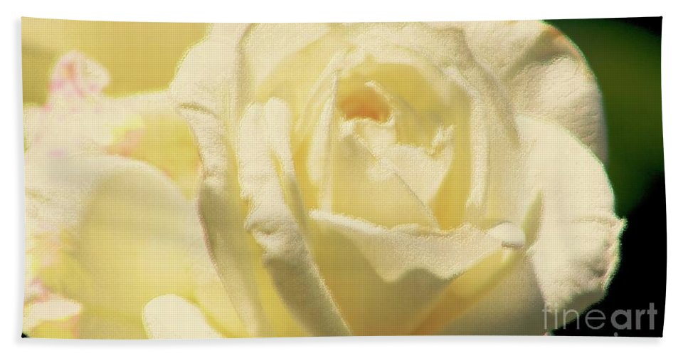 Rose Beach Towel featuring the photograph Beauty by Raquel Daniell