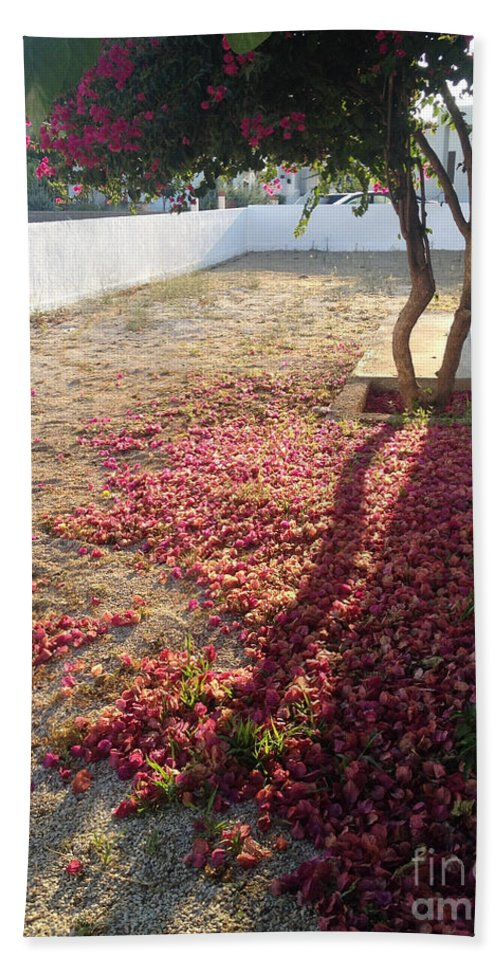 Bougainvillea Beach Towel featuring the photograph Bed Of Bougainvillea by Clay Cofer
