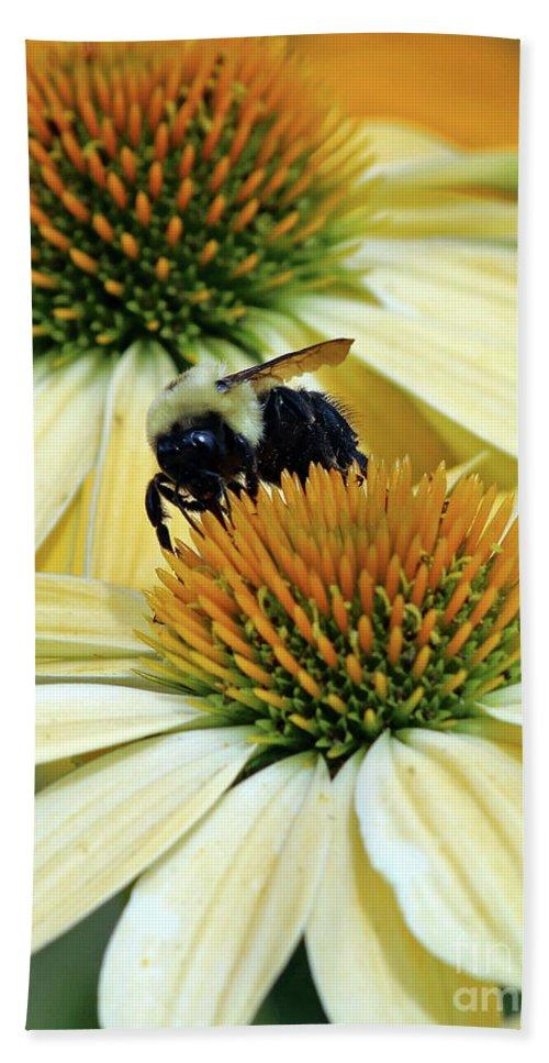 Flowers Beach Towel featuring the photograph Bee Buzzer by Steve Gass