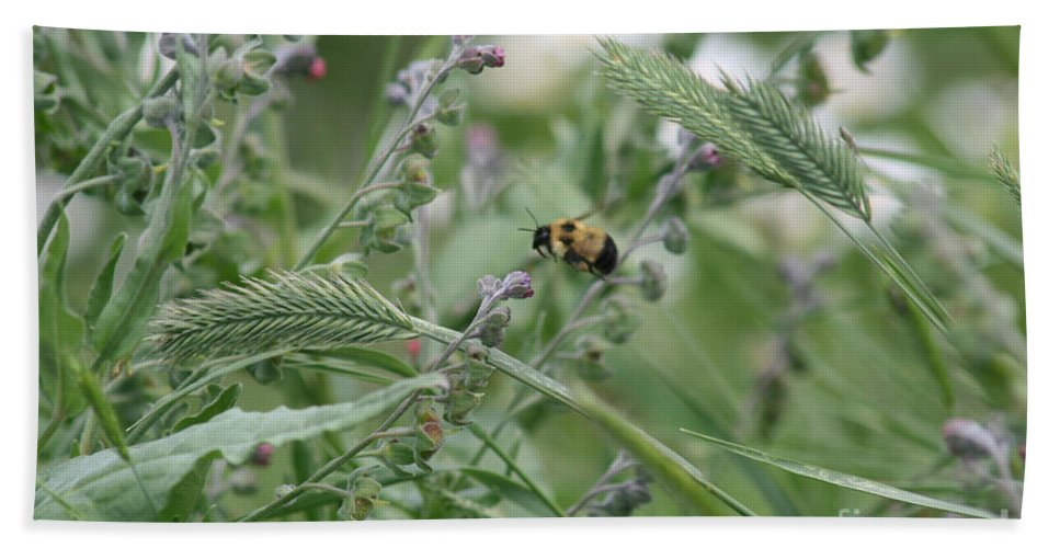 Bee Beach Towel featuring the photograph Bee In Flight by Mary Mikawoz