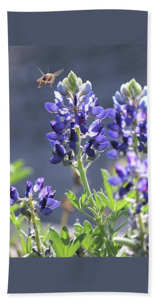 Blue Bonnet Beach Towel featuring the photograph Bee In My 'bonnet by Amber Stubbs