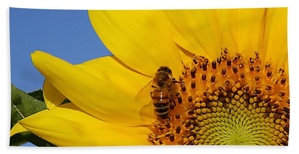 Flower Beach Towel featuring the photograph Bee My Sunshine by Shari Jardina
