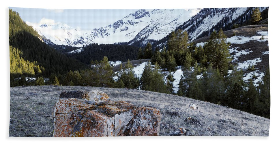 Idaho Scenics Beach Towel featuring the photograph Bell Mountain by Leland D Howard