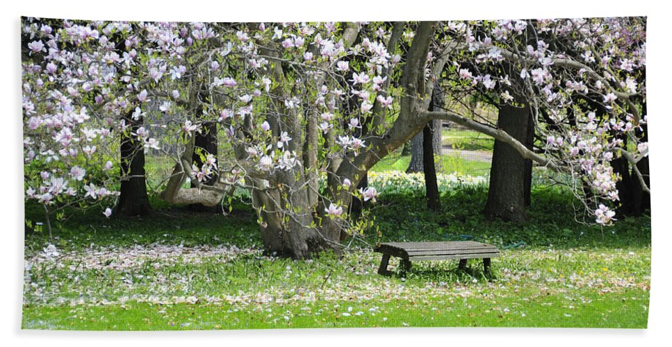 Bench Beach Towel featuring the photograph Bench Among Magnolia by David Arment