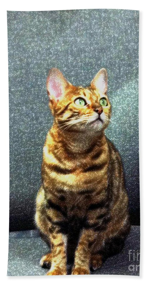 Bengal Cat Beach Towel featuring the photograph Bengal Cat Oil Pastel by Barbara Griffin