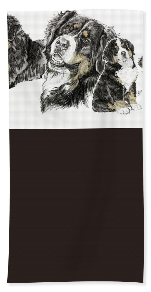 Working Group Beach Towel featuring the drawing Bernese Mountain Dog by Barbara Keith