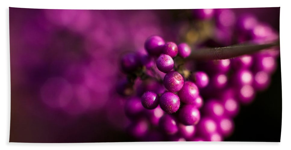 Beauty Berries Beach Towel featuring the photograph Berries Still Life by Mike Reid
