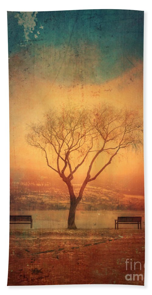 Texture Beach Towel featuring the photograph Between Two Benches by Tara Turner