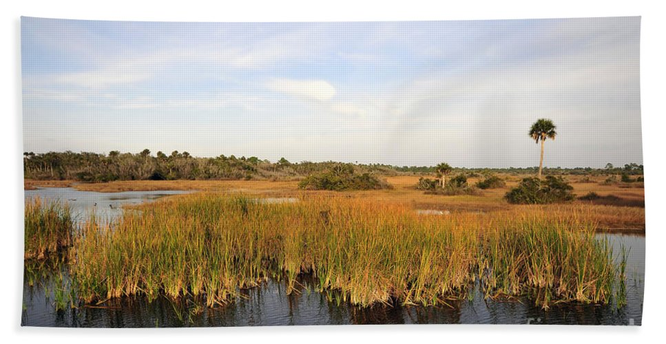 Big Cypress National Preserve Florida Beach Towel featuring the photograph Big Cypress Landscape Number Six by David Lee Thompson